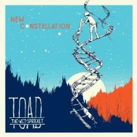 toad-new-constellation