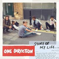 one_direction_story