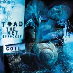 toad_sprocket_coil