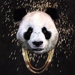 desiigner_panda